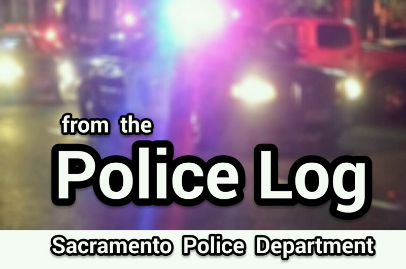 POLICE LOG: Stolen Vehicle Investigation, officer shoots charging dog, Del Paso Heights