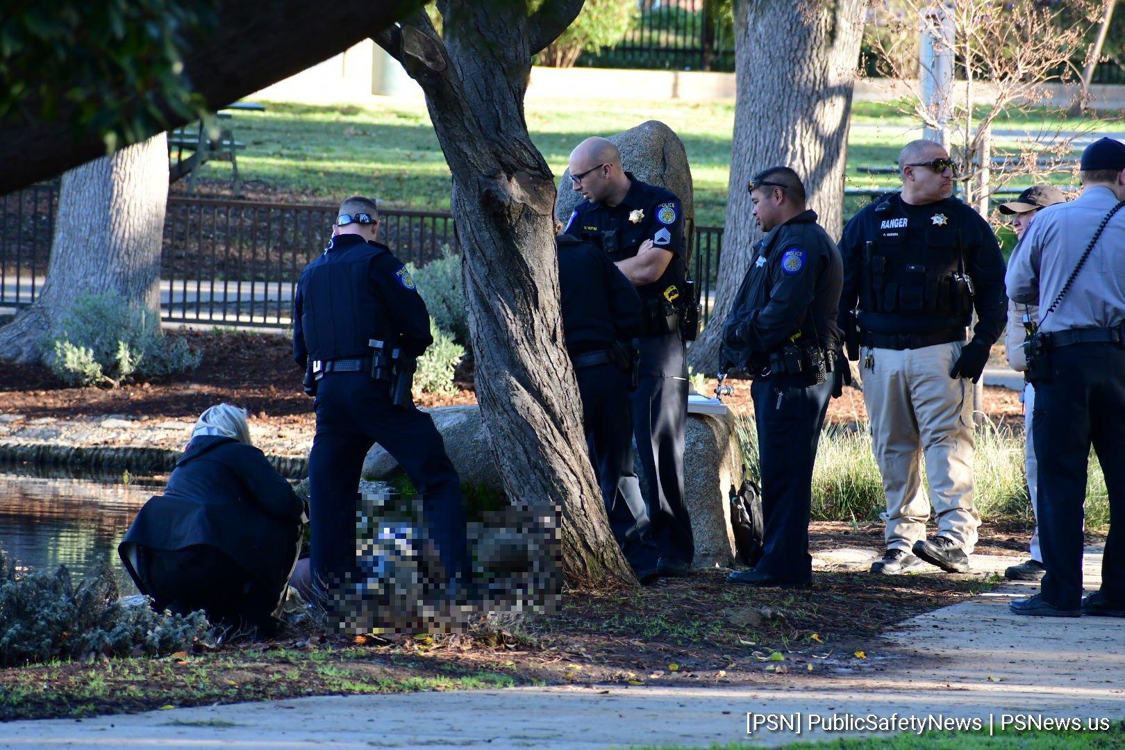 VIDEO: Death Investigation, McKinley Park
